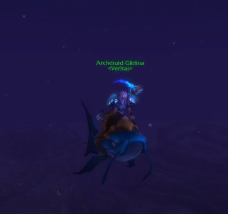 Gildina on her 299th mount!