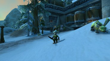 Winterwolf's Beastmaster Hunter transmog for Fizzlepipe (low level)