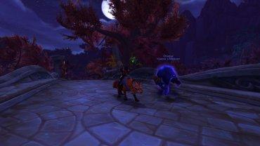 Leeta got her fox mount!